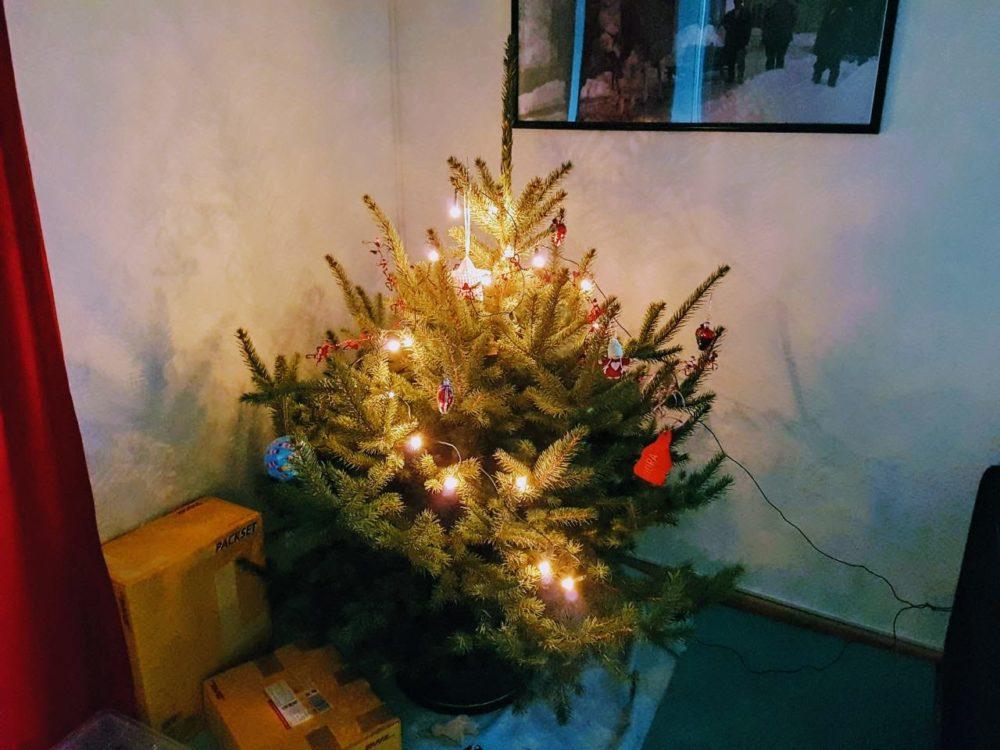 mein weihnachtsbaum und ich kologisch ist anders eva meint 39 s gut. Black Bedroom Furniture Sets. Home Design Ideas